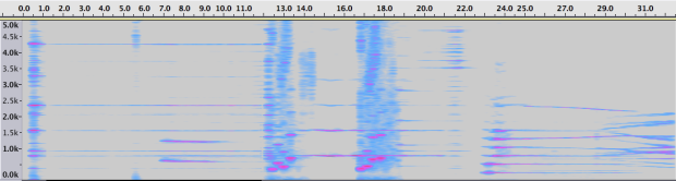 Espectrograma de la Sección 2.