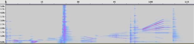 Espectrograma de la Sección 3.