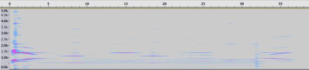 Espectrograma de la Sección 4.