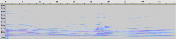 Espectrograma de la Sección 5.