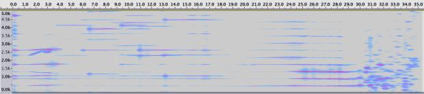 Espectrograma de la Sección 6.