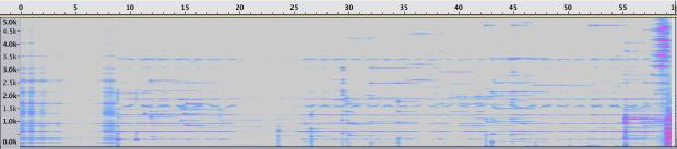 Espectrograma de la Sección 7.