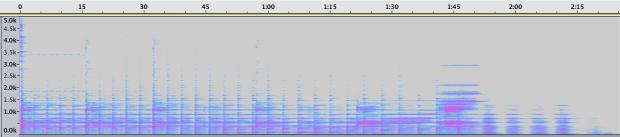 Espectrograma de la Sección 8.